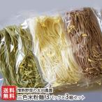 新潟コシヒカリと季節の野菜を使った三色米粉麺(3箱セット)/グルテンフリー/米粉パスタ/送料無料