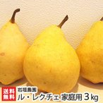 【送料無料】家庭用 訳ありル・レクチェ3kg(6〜11個) 岩服農園(新潟)幻の洋梨ルレクチェ