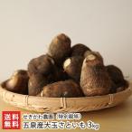 【送料無料】新潟五泉産大玉さといも(特別栽培)3kg せきかわ農園