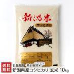 令和元年度米 新潟産 無農薬・無化学肥料の特別栽培米コシヒカリ 玄米10kg 石倉農園/のし無料/送料無料