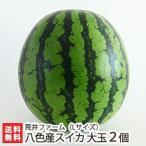 魚沼 八色産スイカ 大玉 Lサイズ 2個入り 荒井ファーム/ギフトに!/送料無料