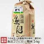 29年度新米 魚沼産 特別栽培米 コシヒカリ 精米5kg うおぬまのお米農家/お歳暮ギフト お祝い 贈り物 のし無料/送料無料