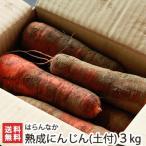 魚沼産 無農薬栽培 熟成にんじん(土付き)3kg はらんなか 送料無料