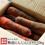 魚沼産 無農薬栽培 熟成にんじん(土付き)10kg はらんなか 送料無料