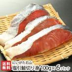 新潟産 塩引鮭切り身 100g×6パック にいがた石山/御歳暮にも!ギフトにも!/のし無料/送料無料