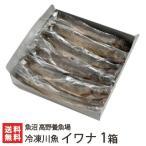 新潟産 冷凍川魚 イワナ 1箱(11尾入り)魚沼 高野養魚場/のし無料/送料無料