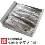 新潟産 冷凍川魚 ヤマメ 1箱(11尾入り)魚沼 高野養魚場/お歳暮に!/のし無料/送料無料
