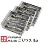 新潟産 冷凍川魚 ニジマス 3箱(12尾入り×3)魚沼 高野養魚場/のし無料/送料無料