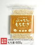 新潟産 もち麦「ぷっちんもちむぎ」600g(200g×3袋) JAささかみ/送料無料