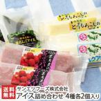 アイス詰め合わせ 4種各2個入り サンエツフーズ株式会社/のし無料/送料無料