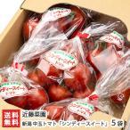新潟産中玉トマト「シンディースイート」5袋入(1袋約250g)近藤菜園/送料無料
