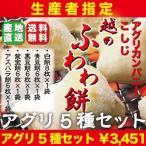 生産者指定!最高峰もち米品種「こがねもち」100%使用!!「越のふわわ餅」杵つき餅5種5袋セット!!