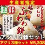 生産者指定!最高峰もち米品種「こがねもち」100%使用!!「越のふわわ餅」杵つき餅3種8袋セット!!