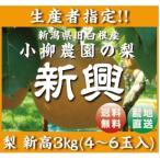 生産者指定!【新潟県白根産】小柳農園の新興3キロ!,4〜6個入!!