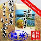 【新米入荷】平成29年産 新潟県産 こしいぶき 精米5kg 送料無料(一部有料)