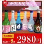 ショッピング日本酒 飲み比べセット 日本酒 新潟 辛口飲み比べ 300ml×6本セット 送料無料