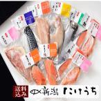 鮭魚 - AJE50 輝き詰合せ  新潟たけうち