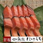 きー103 本造ります甘塩10切 トラウトサーモンを新潟で干し上げた伝統製法 鮭 お中元 冷凍食品 冷凍 魚 冷凍保存 高級 鮭 高級サーモン