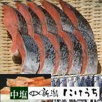 きー11 本造り鮭 金印 中塩(10切) 原料:北海道産 天然 新潟たけうち