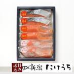 YMA35【送料込 本造り鮭 鱒 銀鮭塩こうじ詰合せ 】新潟 お中元  サーモン 鮭切り身 鮭 北海道 鮭 冷凍保存 のし対応 高級ギフト
