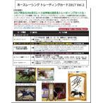 (予約)EPOCH ホースレーシングトレーディングカード2017 Vol.2 BOX (3月24日発売へ延期)
