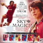 ■セール■BBM 大崎電気ハンドボール部カードセット 2008 SKY MAGIC!!