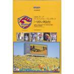 ■セール■2009 Jリーグオフィシャルトレーディングカード ベガルタ仙台