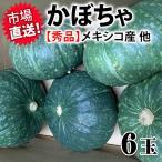 かぼちゃ 秀 6玉 NZ産 冷えから体を守る