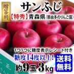 送料無料 贈答用りんご サンふじ 糖度表示付き 特選 3Kg(約9玉) 糖度14度以上 那由多のりんご園 贈答 お歳暮 ギフト