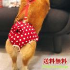 犬服 ドッグウェア サニタリーパンツ 生理パンツ マナーパンツ ドット リボン サスペンダー おむつカバー 女の子 発情期 メス 生理 マーキング メール便送料無料