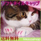 セール ネイルキャップ 猫用 ネイルカバー 20個セット 専用接着剤付き メ ール便(DM便)送料無料