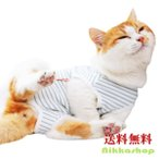 猫用術後ウェア ストライプ 猫用 術後服 猫介護服 避妊 去勢 皮膚保護 雄 雌兼用 傷舐め 引っ掻き防止  (S‾XL)  メール便送料無料