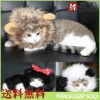 猫用変身帽子(ブラック・ホワイト)  猫用 首輪 カラー メール便送料無料