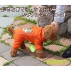 犬の服 レインコート カラフル オレンジ 中-大型犬用 (M-XLサイズ)【RUISPET ルイスペット】 ワンコ服 取寄商品 メール便(DM便)送料無料