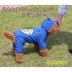 犬の服 レインコート カラフル ブルー 中-大型犬用 (2XL-4XLサイズ)【RUISPET ルイスペット】 ワンコ服 取寄商品 メール便(DM便)送料無料
