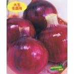 松永種苗 タマネギ 赤玉葱フレッシュレッド 9cmポット苗 2ポットセット