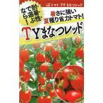 フタバ種苗 ミニトマト TYまなつレッド 約10粒