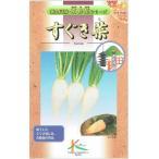 タカヤマシード すぐき菜 10ml