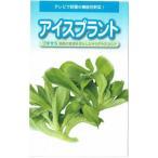 武蔵野種苗園 アイスプラント プチサラ コート種子 約60粒