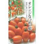 丸種 ミニトマト オレンジなつめっ娘 約10粒