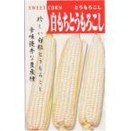 日本タネセンター トウモロコシ 白もちとうもろこし  1L