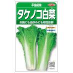 サカタのタネ タケノコ白菜 中国紹菜 10ml