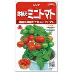 サカタのタネ 鉢植えミニトマト レジナ 0.6ml