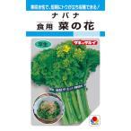 タキイ種苗 ナバナ 食用菜の花 5ml