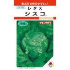 タキイ種苗 レタス シスコ 1.1ml