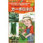 トキタ種苗 グストイタリア カーボロネロ (黒キャベツ) 約40粒