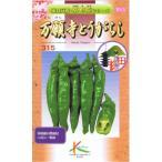 タカヤマシード 伝統野菜  万願寺唐辛子 1.2ml