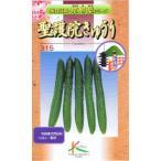 タカヤマシード 伝統野菜  聖護院キュウリ 2ml
