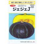 渡辺採種場 かぼちゃ ジェジェJ 約15粒