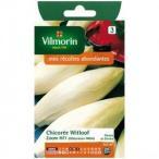 Vilmorin社  チコリー Zoom HF1